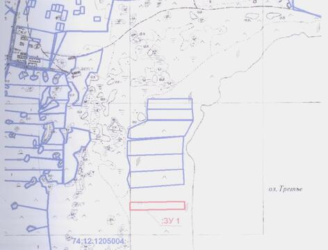 Продам 250 соток земли за пос. Петровский 18 км от Челябинска - Фото 1