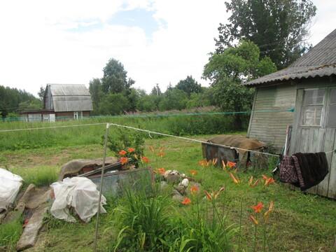 Дом в деревне на участке 62 сотки и воздух - амброзия! - Фото 4