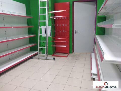 Аренда торгового помещения, м. Политехническая, Курчатова улица д. 6 - Фото 3