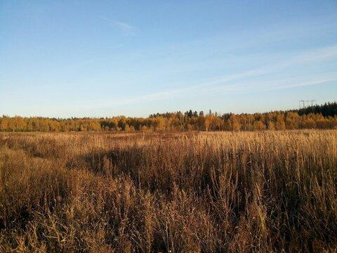 Участок 10 сот. , Щелковское ш, 22 км. от МКАД. - Фото 1
