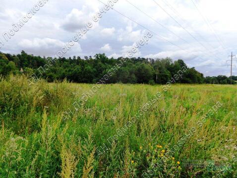 Новорижское ш. 50 км от МКАД, Звенигород, Участок 270 сот. - Фото 4