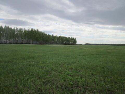 Земельный участок в Красноармейском районе поселок Лазурный - Фото 1