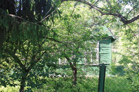 Дача в 15 км от м. Саларьево. Лесной участок. Городская ифраструктура - Фото 5