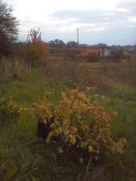 Земельный участок 7 соток, Обнинск - Фото 1
