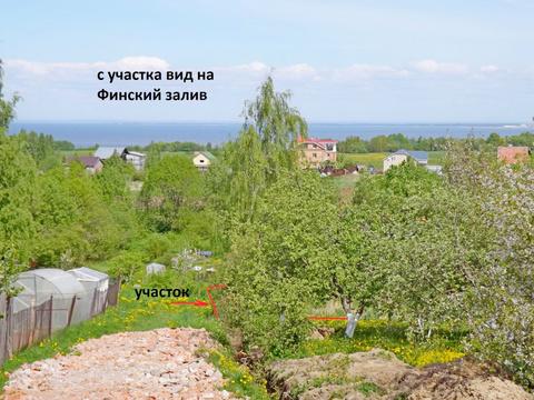 Продажа участка, Пеники, Ломоносовский район, Новая ул. - Фото 3