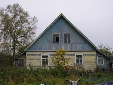 Жилой дом Палкинский р-н, д. Грибули - Фото 1