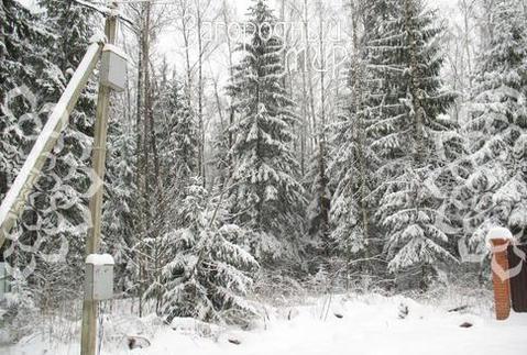 Минское ш, 34 км от МКАД, Зеленая Роща - Фото 2