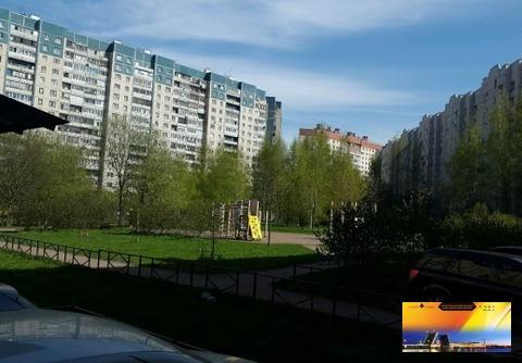 Двухкомнатная квартира в Приморском районе по Доступной цене - Фото 3