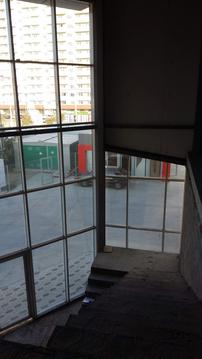 Торгово-офисное помещение 242 кв.м, Краснодар - Фото 4