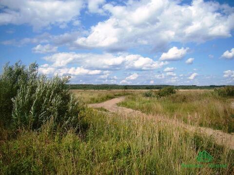 16 Га сельхоз либо пром назначения - 75 км от МКАД - Фото 4