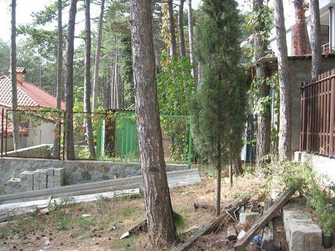 Продам зем. участок 3,87 сотки, в окружении Ялтинского заповедника. - Фото 1