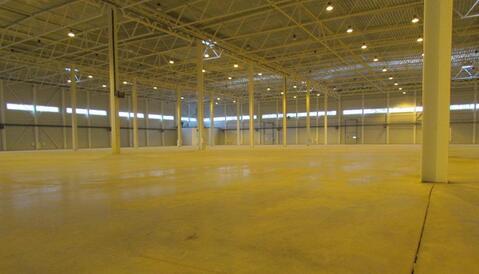 Сдам производство-складские площади 20 000 кв.м. - Фото 1