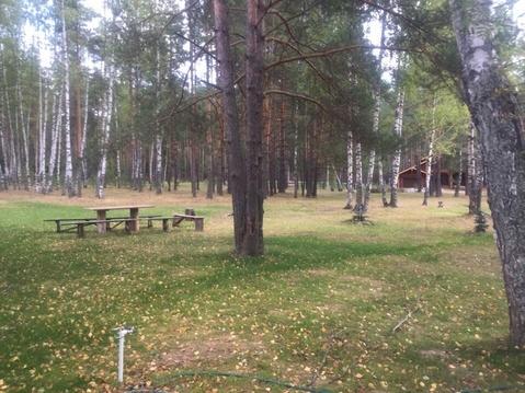 Судогодский р-он, Спас-Купалище с, Спас-Купалище, земля на продажу - Фото 3