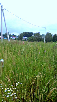 Земля ИЖС, красивые виды, дешево, 35 км от Н.Новгорода - Фото 4