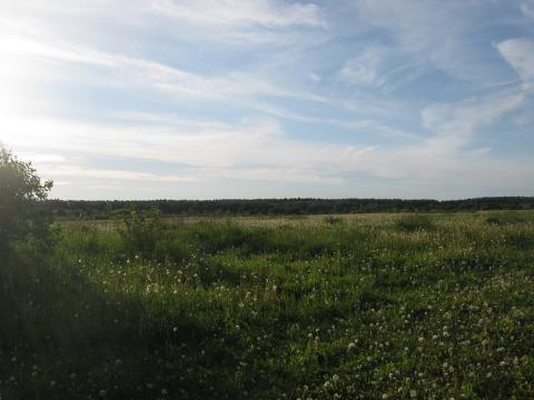 С. Куракино 44 га, Калужская область - Фото 2