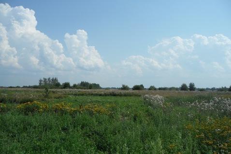Участок в деревне Синьковщина - Фото 2