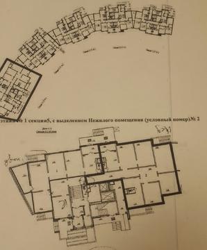 Сдам псн от 93 кв.м. до 242 кв.м. г. Домодедово, Курыжова, 1к1 - Фото 2