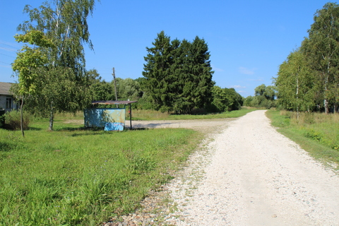 Продается земельный участок 6 Га в д. Поречье, Александровский р-н - Фото 5