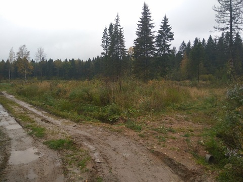 Продается участок, поселок Матросова - Фото 2