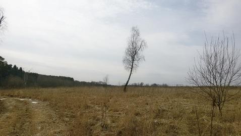 Участок 1,68 Га знп в 27 км по Калужскому шоссе - Фото 5