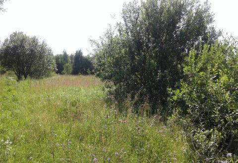 Земельный участок в СНТ Приозерье, Лучинское, Подольск. - Фото 1