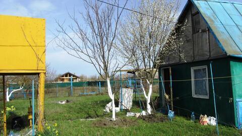 Дачу, земельный участок 3,5 с, рядом Краснодар - Фото 1