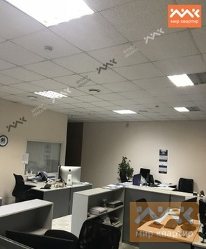 Офис 200м2 на Петроградке. - Фото 3