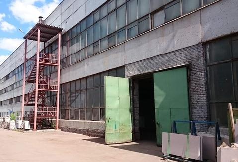 Помещение под производство 46902 м2, м. Царицыно - Фото 4