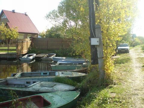 Мошковский залив в Конаково - рыбаки с рыбой, грибники с грибами - Фото 3