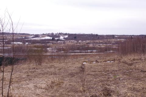 Продается участок 588 соток в деревне Лизуново - Фото 4