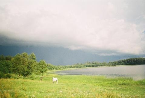 Земельный участок в д. Мыленки - Фото 2