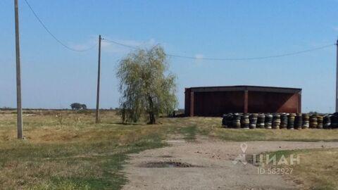 Продажа склада, Новая Адыгея, Тахтамукайский район, Шоссе Тургеневское - Фото 1