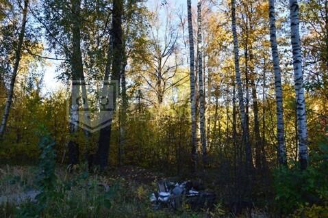Лесной участок 22 сот. - Фото 1