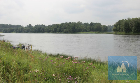 Участок у реки и соснового леса - Фото 1