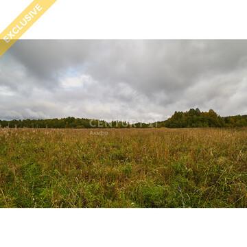 Продажа земельного участка 1,25 Га в д. Гомсельга на 1 береговой линии - Фото 5