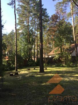 Продам землю в ДНТ Ельцовка - Фото 2