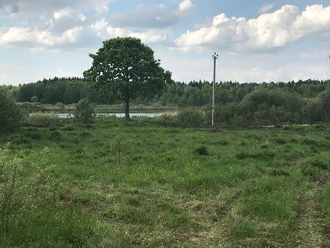 2 га земли под крестьянско-фермерское хозяйство - Фото 4