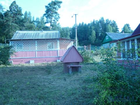 Продам дом деревня Ляды Плюсский район Псковская область - Фото 3