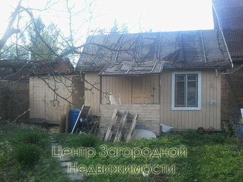 Дом, Минское ш, Можайское ш, 69 км от МКАД, садовое товарищество . - Фото 2