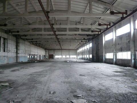 Продается здание 11291 м2, Искитим - Фото 3