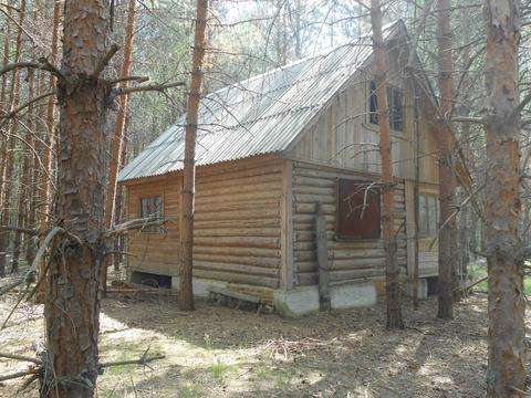Охотничий домик в лесу вблизи озера - Фото 3