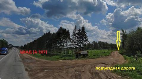 1га промназначения Белый раст 30 км. от МКАД - Фото 1