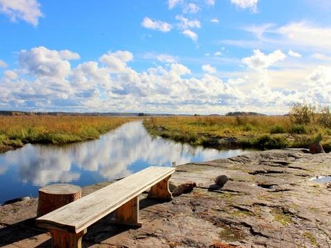Охотничий домик с уч 27 сот. на берегу Ладожского озера - Фото 2