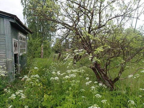 Продажа участка, Толчино, Солецкий район, Ул. Ветеранов - Фото 4