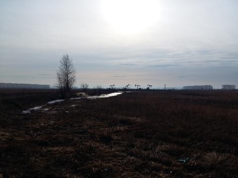 Земли сельхоз назначения (перевод в СНТ, ДНТ) продам - Фото 4