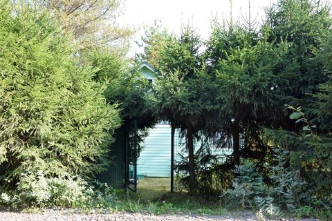 Продается садовый дом с земельным участком в СНТ «Корунд» - Рощинское - Фото 3