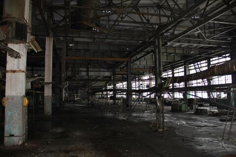 Сдам производственно-складскую площадь 5000 кв.м. - Фото 1