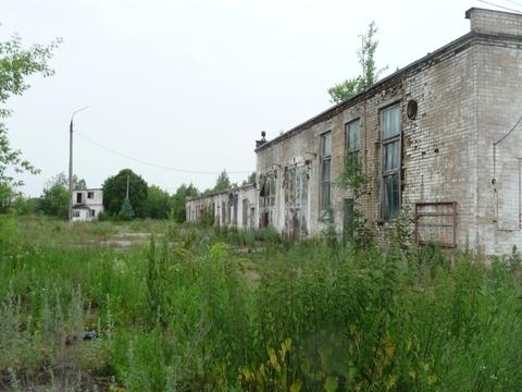 Продажа птицефабрики 152 га - Фото 2