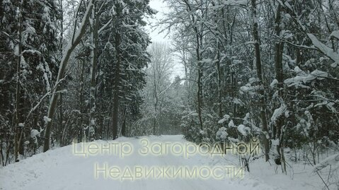 Участок, Ярославское ш, Дмитровское ш, 40 км от МКАД, Данилово д. . - Фото 2