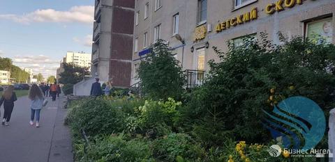 Объявление №58794208: Помещение в аренду. Санкт-Петербург, ул. Звездная, 5к1,